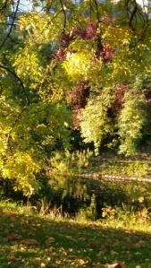Kendal riverside